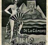 Egyptian FM Camara